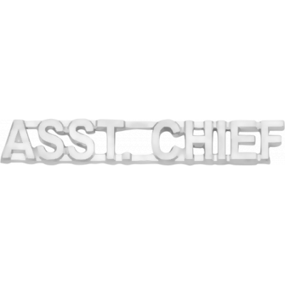 C502 ASST. Chief Collar Letters